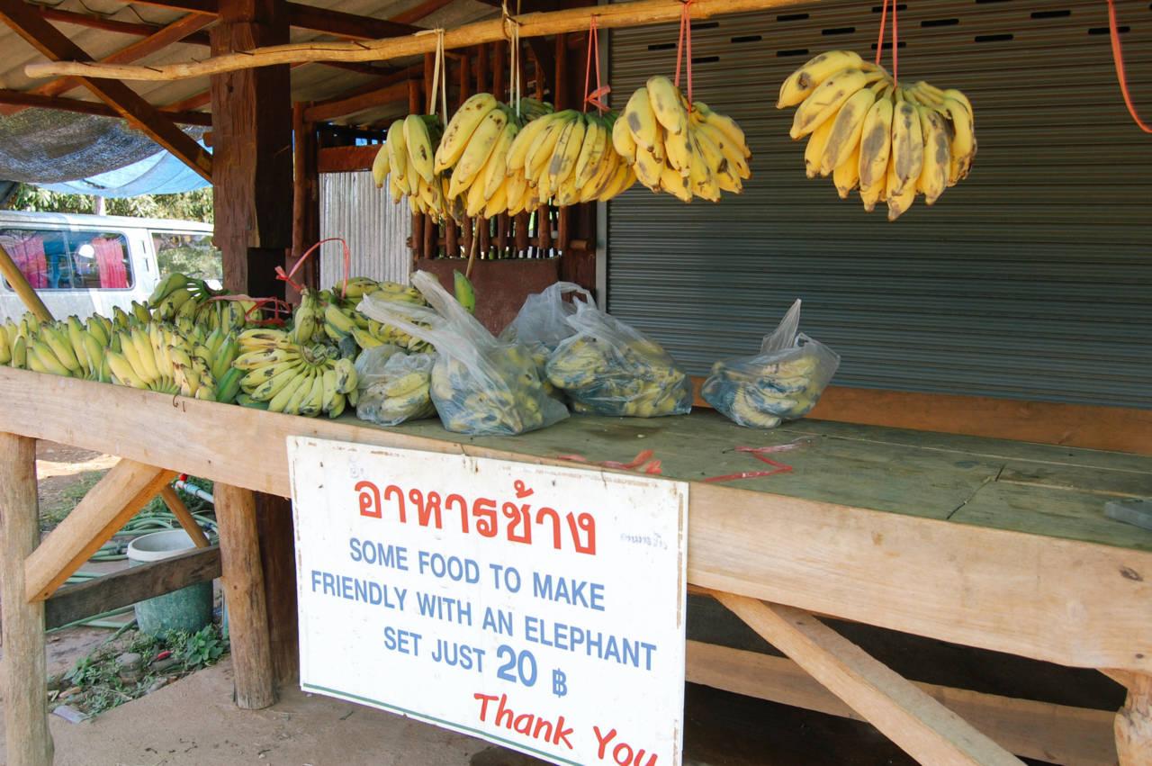 エレファントライドの餌バナナ