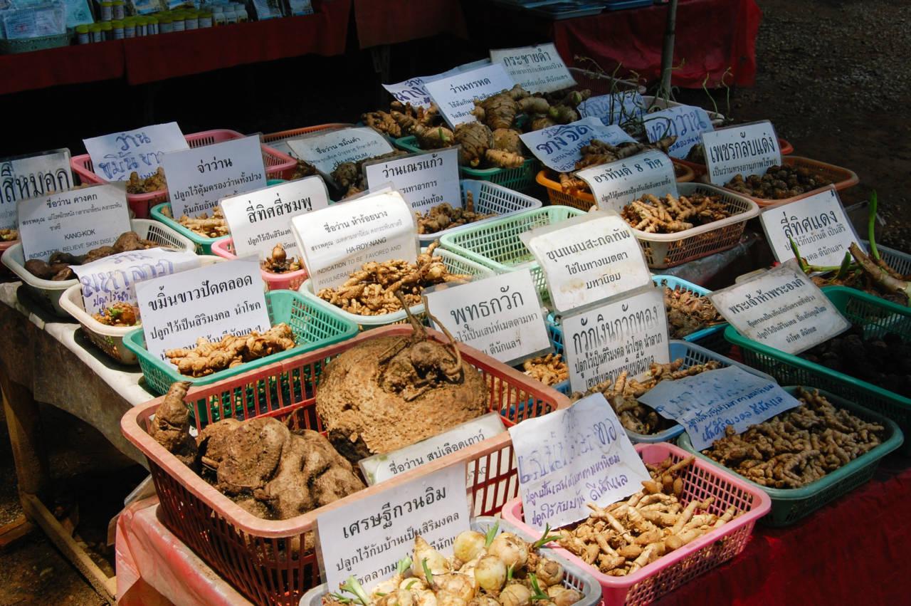 タイの薬草