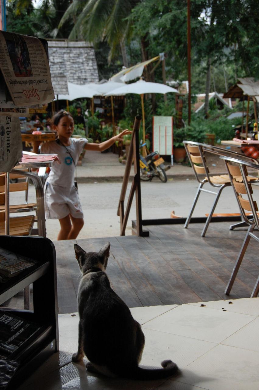 ルアンパーンのカフェと猫と物売りの少女