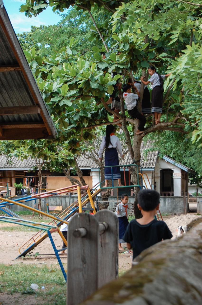 ルアンパバーンの小学校 木登りする子供達