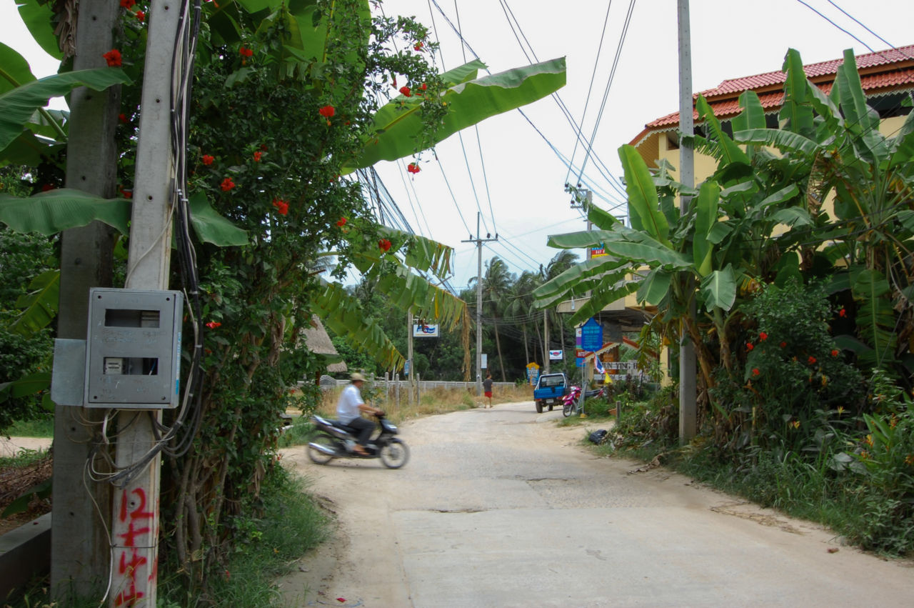 タオ島の道路